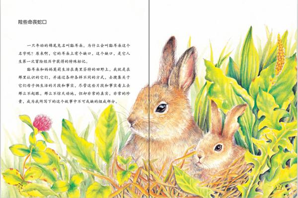 入选中小学生课外阅读必读书目 第一部真正意义上的世界级动物小说集 动物文学之父西顿呕心沥血的传世经典 已被翻译成多国语言,风靡世界百余年,全球销量上亿册 传阅百年、历久弥新的动物小说之父西顿的作品,自1898年出版以来,一直是亲近大自然、爱好野生动物者必读的经典,也是影响世界科普及动物小说写作者的精神宝库。 西顿穷尽一生无数次冒着生命危险、出入人迹罕至的荒野、雪原、森林,搜集人们口口相传的惊险故事,以亲身的观察纪录、饱含深情的文字、极富人性关怀的情感,抒写着大自然的另一番风景、动物世界的喜怒哀乐、生
