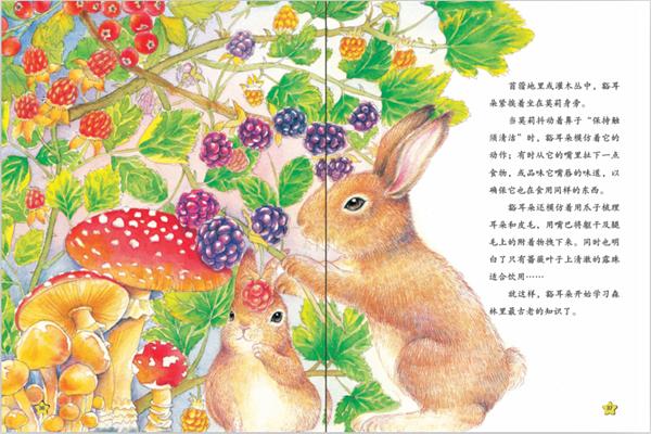 其它-《西顿动物故事小百科》丛书(全5册)票务