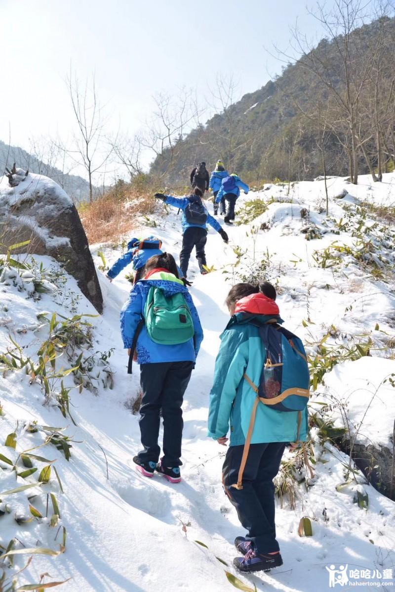 学习冬季野外捕猎技巧,自己动手制作捕猎陷阱,做个小猎人