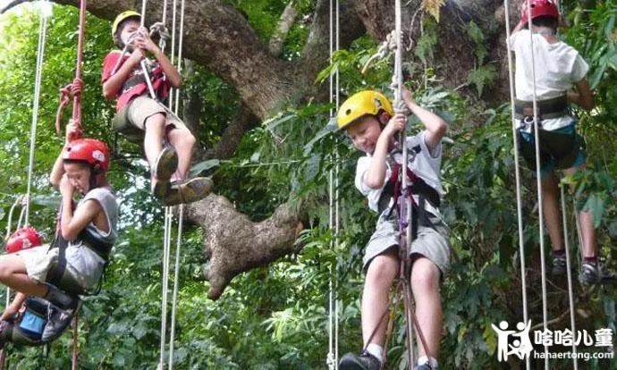 同时今天要学习的技能是像猴子一样攀树,学习像人猿一样在林间溜索!