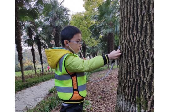 【自然探索】大树医生:倾听树的心跳,感受生命的力量