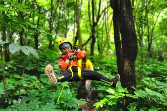 【1日营】攀树课程升级版,技能进阶,勇气挑战,做攀树小达人!