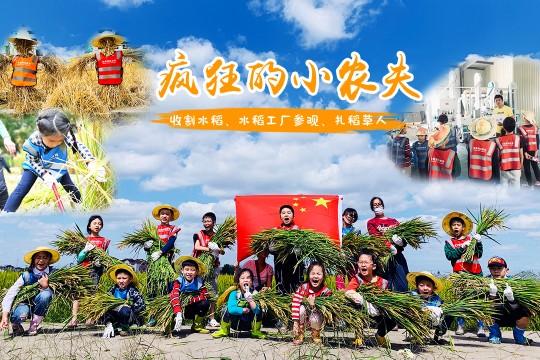 【疯狂小农夫】割水稻、稻米工厂、扎稻草人,DIY草帽、水稻一生科普