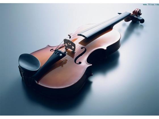 韵谷音乐幼儿,青少年小提琴班